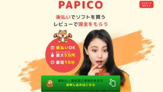 PAPICO会社情報
